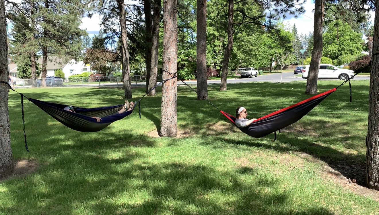 Two people laying in hammocks outside.