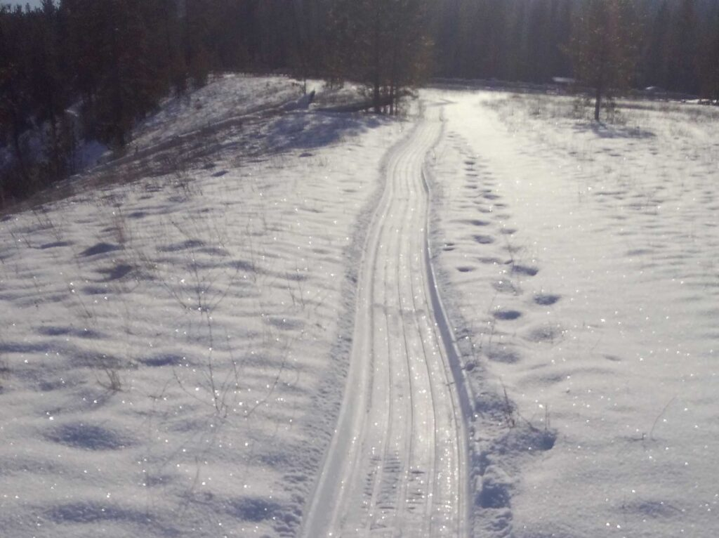 Groomed trail for fat bike riders.