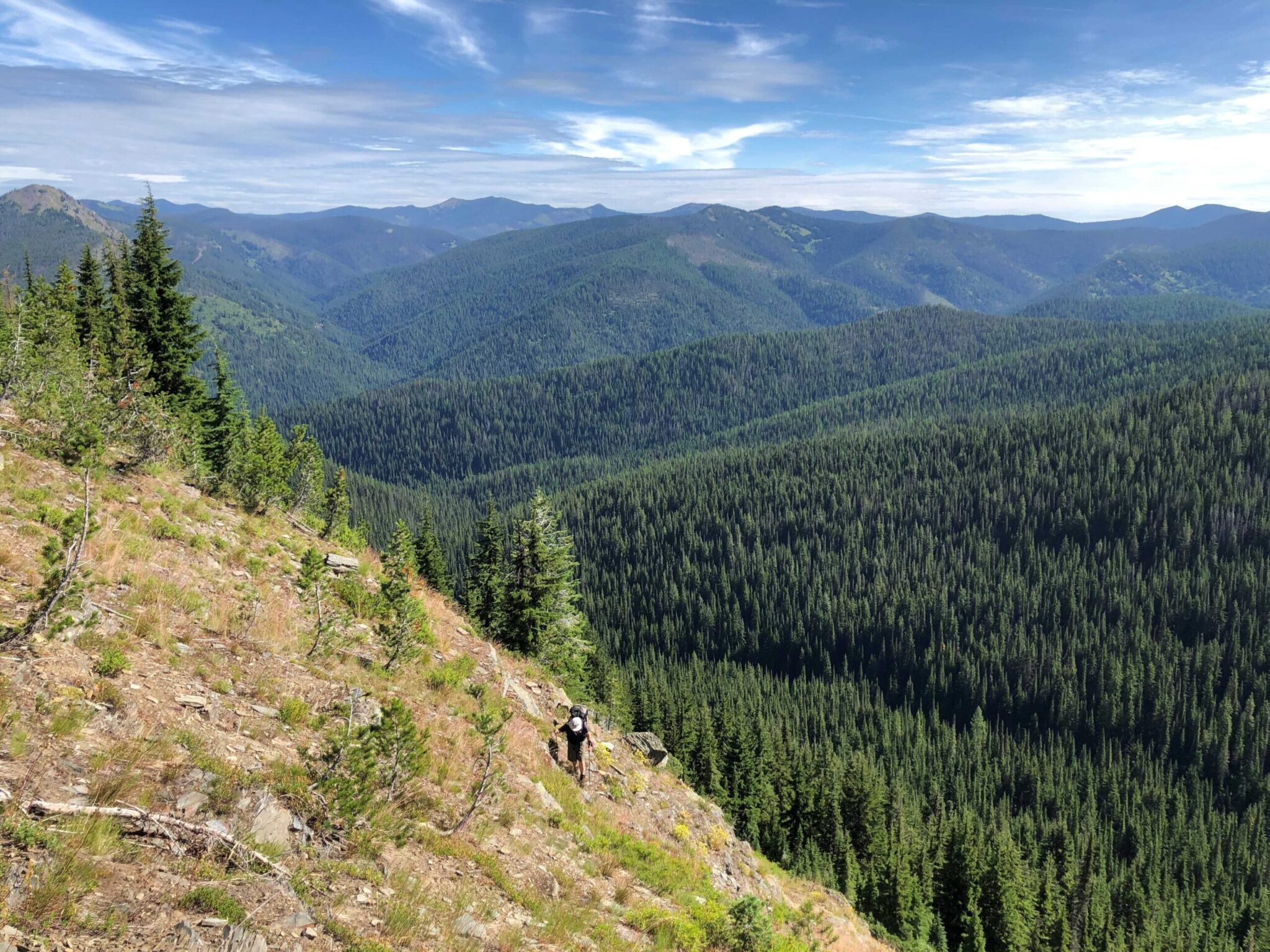 Person overlooking a forested cliff while on a hike.