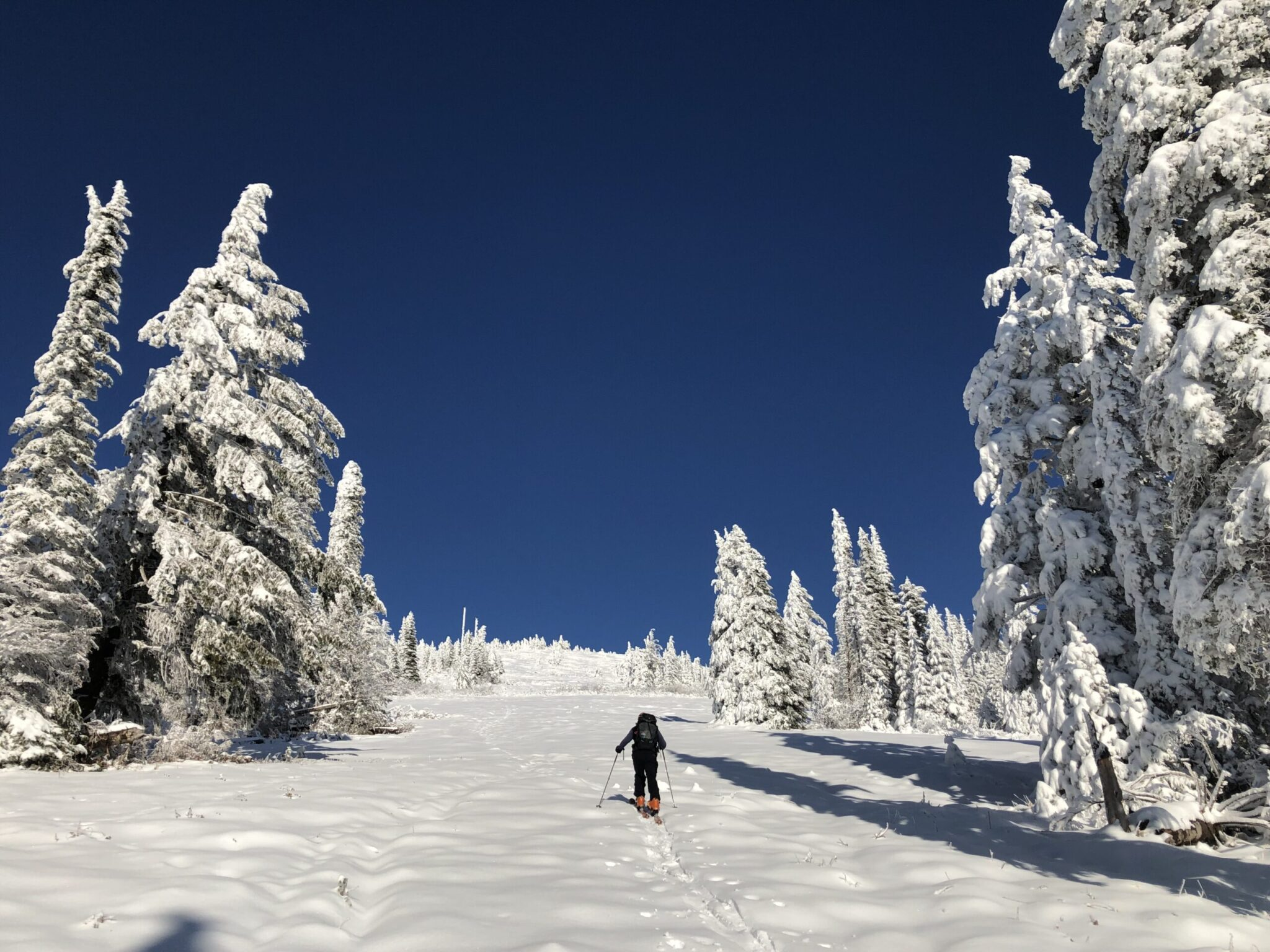 Skier going uphill to the summit of Mt. Spokane.