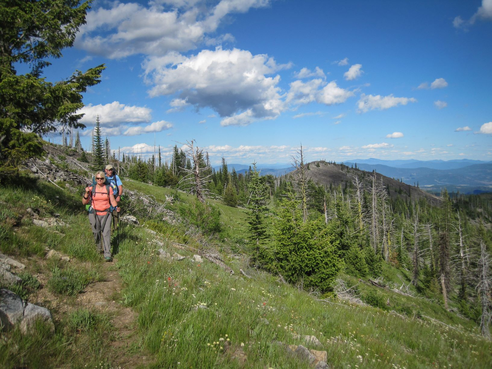 Two hikers on a trail in the Kettle Crest Range -- wearing backpacks and using trekking poles. Forested mountain side with peaks in the distance. Sunny, blue sky with clouds.