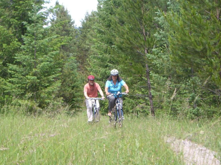 Two bikers pedaling on a trail through a meadow in a forest in North Idaho.