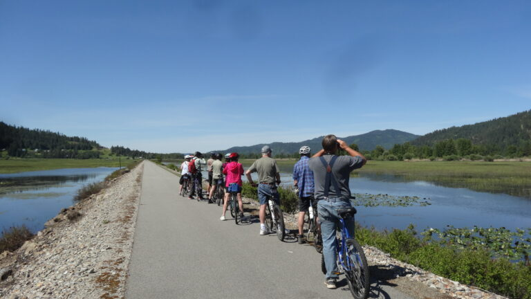 A line of cyclists stopped along the Trail of the Coeur d'Alenes, with water bodies on both sides of the trail. People using binoculars for bird watching.