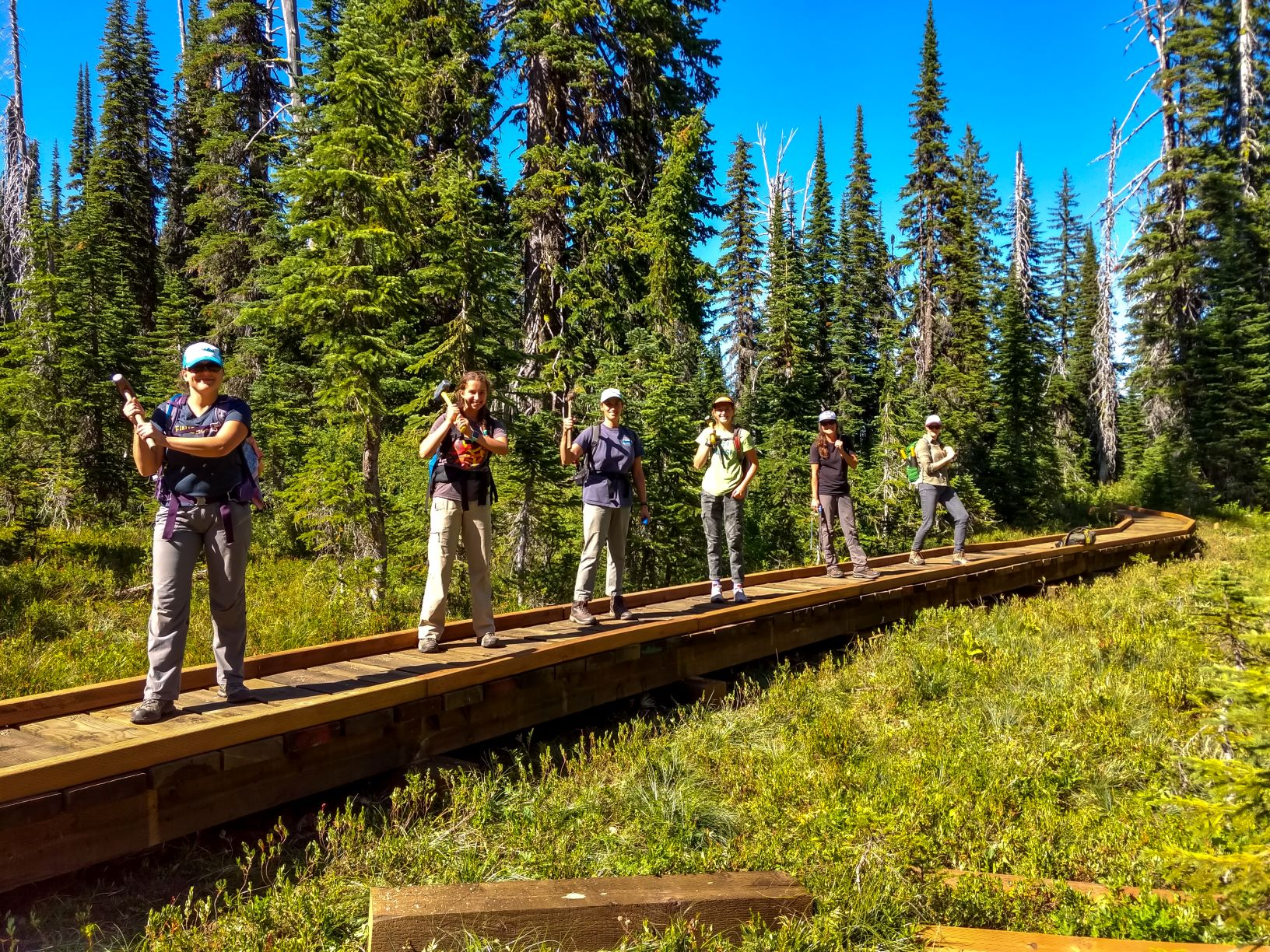 volunteer trail builders standing on a trail boardwalk-bridge in the forest, holding mallets