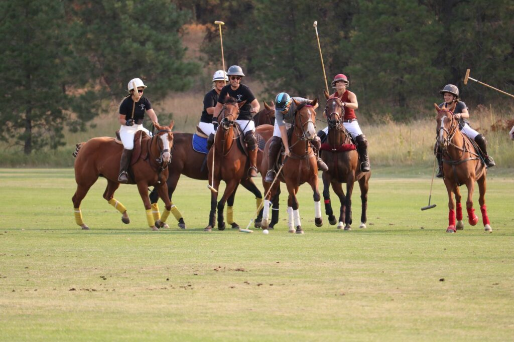 Polo players riding brown horses, wearing helmets, and carrying polo sticks.
