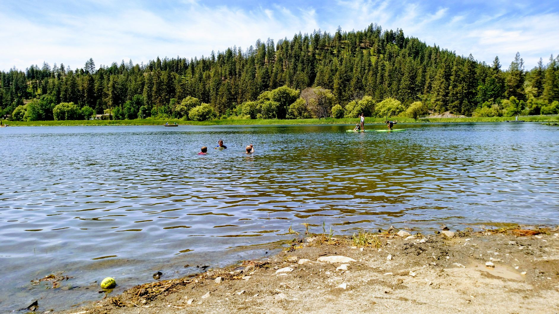 Children swimming and paddleboarding on Fish Lake, with trees in the background and a sandy beach in the foreground.