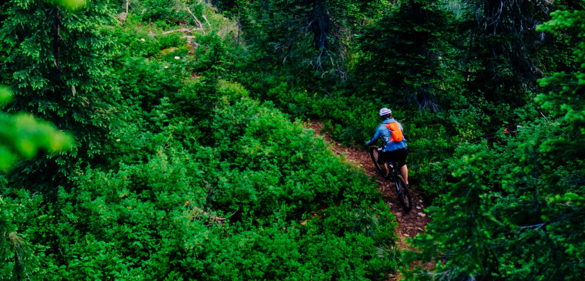 Woman mountain biking around the corner of a forested dirt trail.