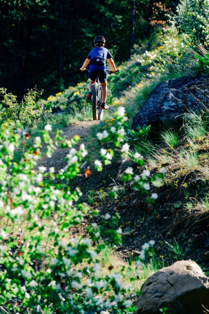 Young mountain biker riding on a singletrack trail alonside wildflowers and boulders.