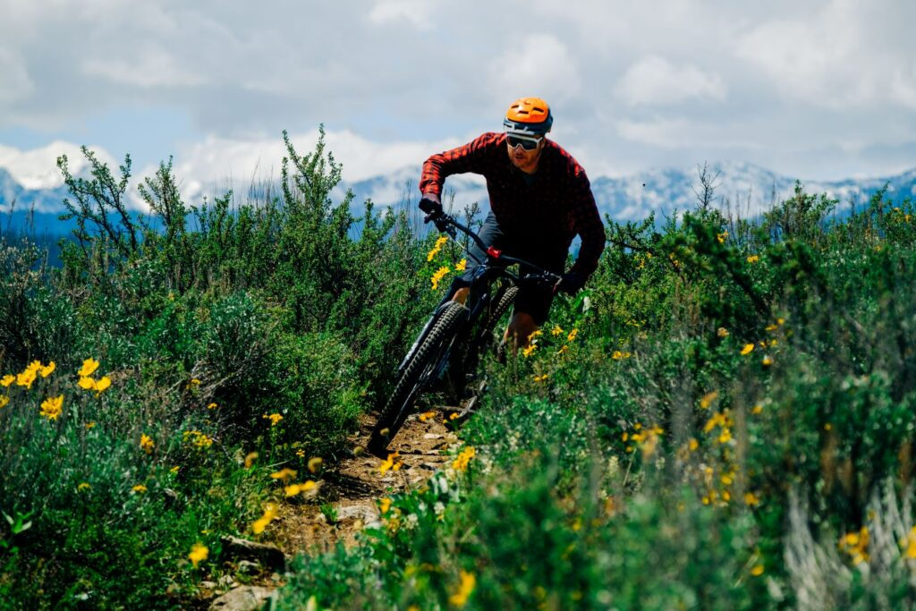 Mountain biker rounding a corner on a singltrack trail alongside wildflowers with the snowy peaks of the North Cascade mountains in the far distance.