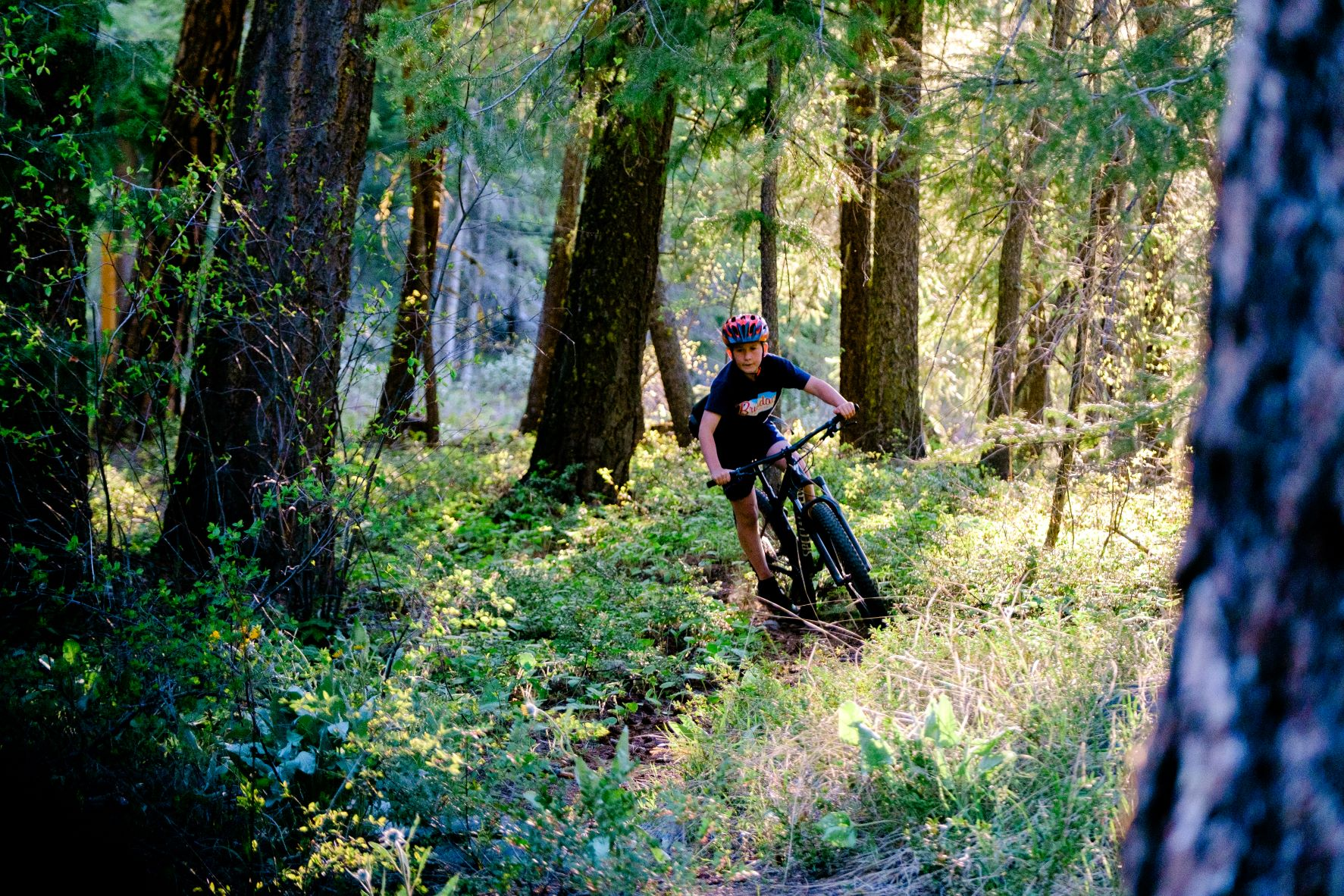 Young mountain biker riding along a singletrack trail through the forest with sunlight coming down between the trees.