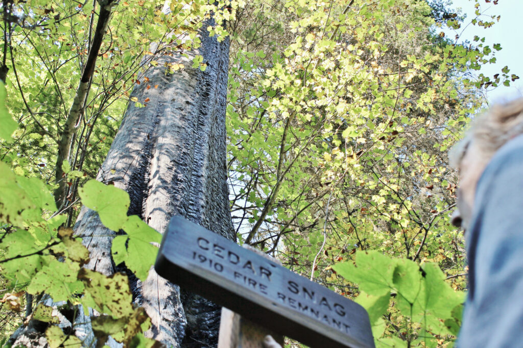 Wooden sign along the Pulaski Tunnel Trail.