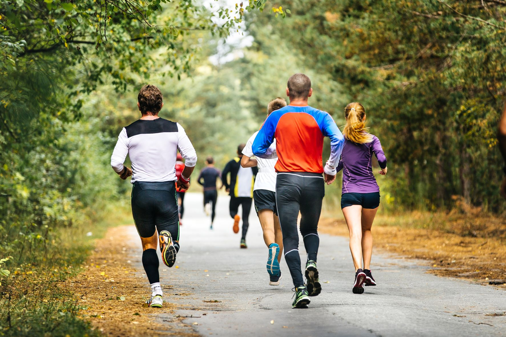 Group of runners on a paved trail in a treed park.