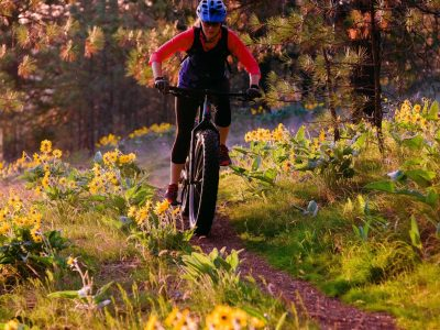 Person fat-biking on a forest trail.